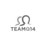 Team-Q14-Logo
